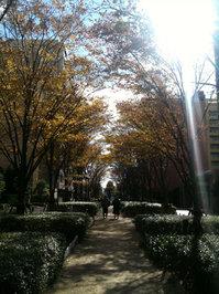 app_photo_truehdr_11.jpg