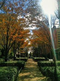 app_photo_truehdr_12.jpg