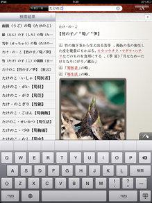 daijisen_ipad_1.jpg