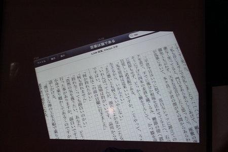 augm_okinawa_2010_19.jpg
