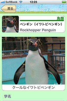 app_edu_kyotozoozukan_13.jpg