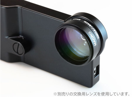 focalpoint_turtleback_6.jpg