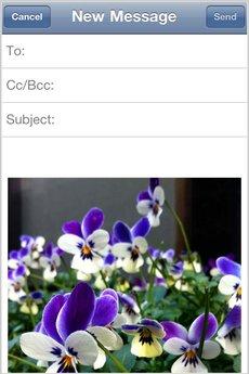 app_photo_cameraplus_11.jpg