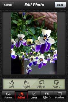 app_photo_cameraplus_7.jpg