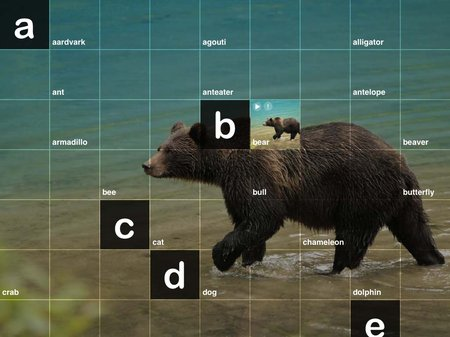 app_edu_abc_wildlife_2.jpg