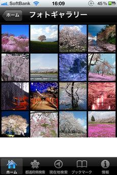 app_navi_yahoohanami2011_7.jpg