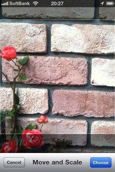 app_photo_cameratan_3.jpg