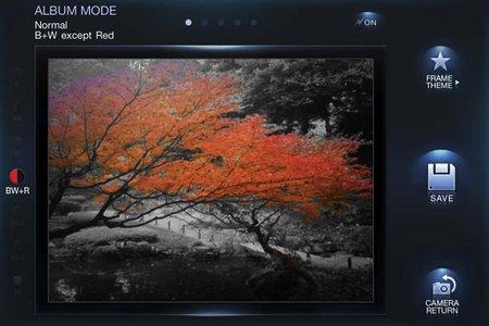 app_photo_norica_9.jpg