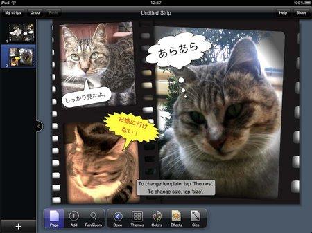 app_photo_strip_designer_12.jpg