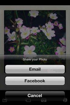 app_photo_shakeitphoto_6.jpg