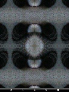 app_photo_symmetry2_12.jpg