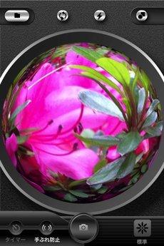app_photo_symmetry_1.jpg