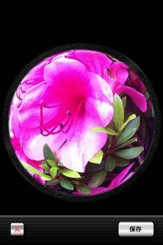 app_photo_symmetry_2.jpg