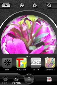 app_photo_symmetry_3.jpg
