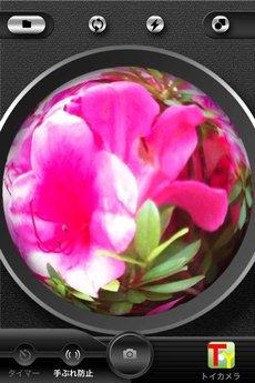 app_photo_symmetry_4.jpg