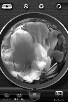 app_photo_symmetry_5.jpg