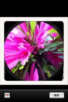 app_photo_symmetry_8.jpg