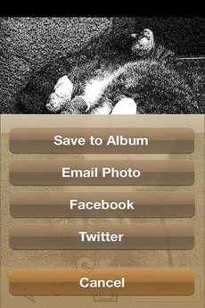 app_photo_tooncamera_10.jpg