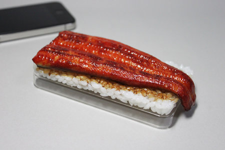 eel_iphone_case_1.jpg