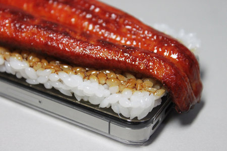 eel_iphone_case_3.jpg