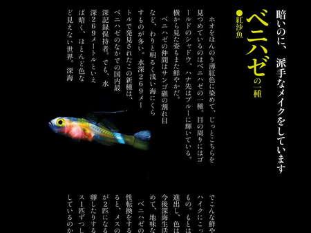 app_book_deep_sea_3.jpg