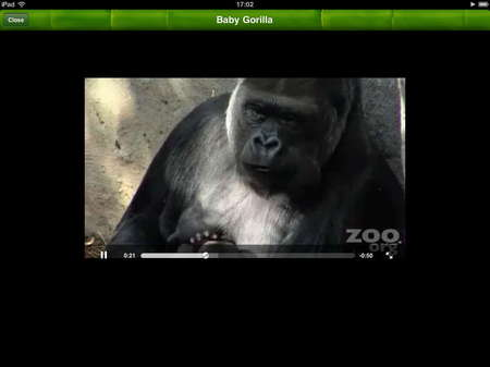 app_edu_pocket_zoo_hd_6.jpg