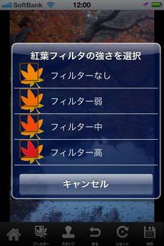app_photo_kouyou_camera_11.jpg