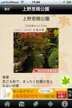 app_photo_kouyou_camera_8.jpg