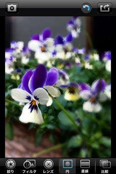 app_photo_big_lens_10.jpg