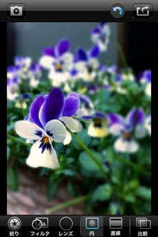 app_photo_big_lens_8.jpg