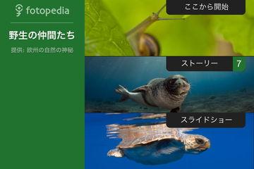 app_travel_fotopedia_wild_friends_9.jpg