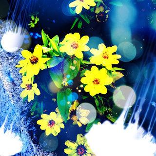 app_photo_cameran_5.jpg