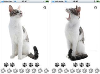 app_ent_singingcat_1.jpg