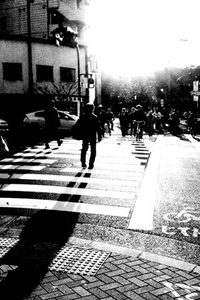 app_photo_spica_2.jpg