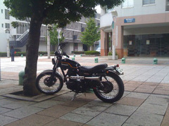 app_photo_toydigi3.jpg