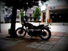 app_photo_toydigi4.jpg