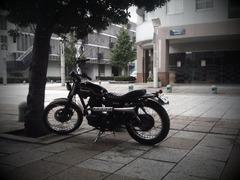 app_photo_toydigi7.jpg