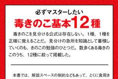 app_ref_kinoko_10.jpg