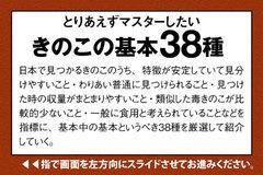 app_ref_kinoko_2.jpg