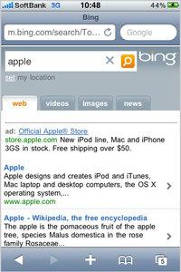 bing_optimized_2.jpg