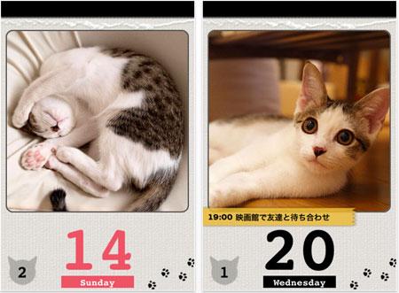 app_sale_2011-01-27.jpg