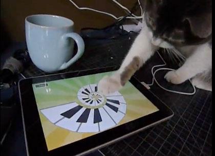 ipad_cat_0.jpg