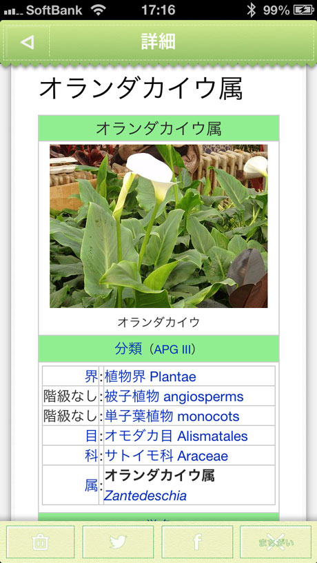 app_edu_plant_detection_10.jpg