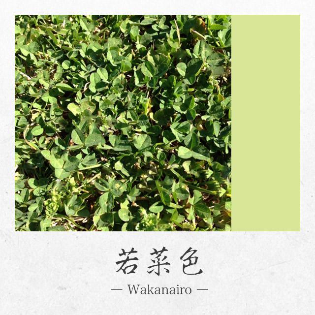 app_photo_kyotocamera_6.jpg