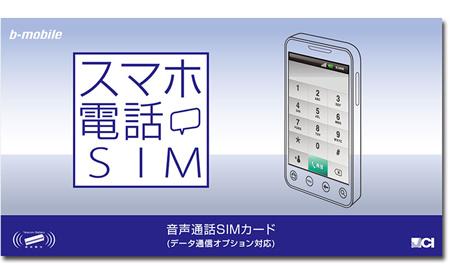 nihion_tsushin_nano_sim_1.jpg