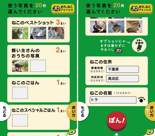 app_photo_ore_neko_2