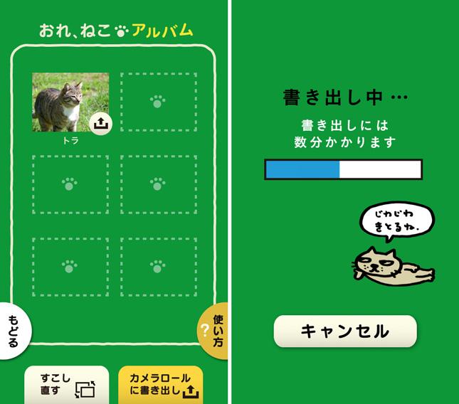 app_photo_ore_neko_3