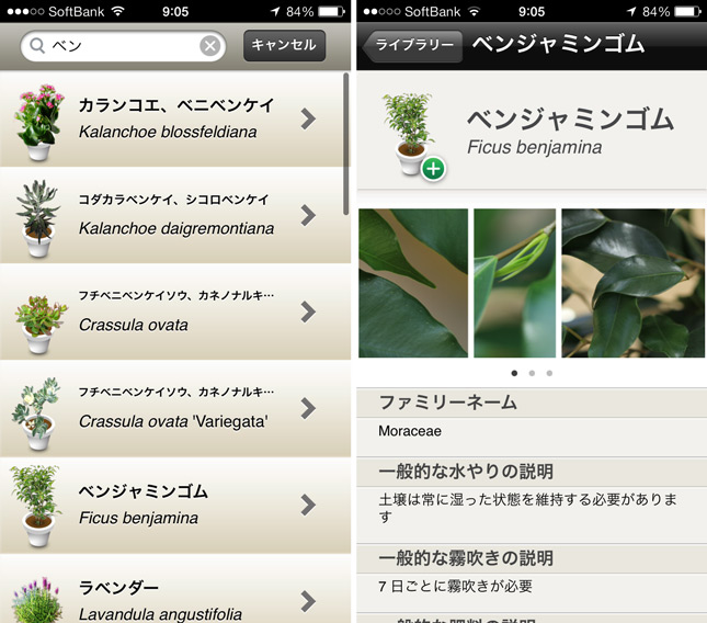 koubachi_plant_sensor_iphone_review_16