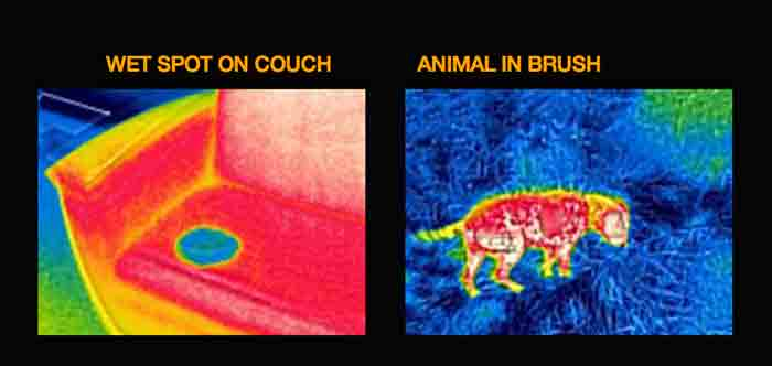 iphone_thermography_flir_one_4