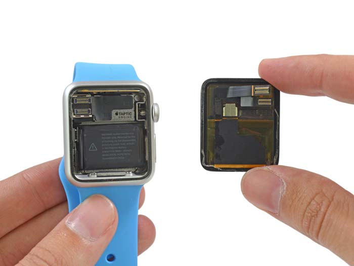 ifixit_apple_watch_teardown_04
